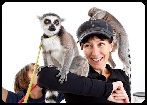 lemur just wants to be tall. kids dispair.